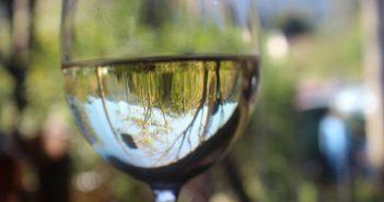 reduktív bor